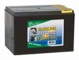 Euro Guard 9V Alkaline-Batterie 175Ah grosses Gehäuse