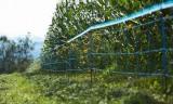 WildNet Wildabwehrnetz, 50m